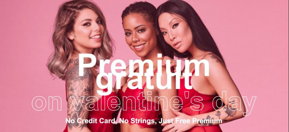 Pornhub premium, gratuit pour la Saint-Valentin !
