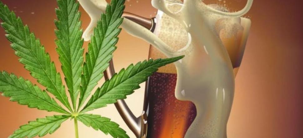 La bière au cannabis débarque sur le marché !